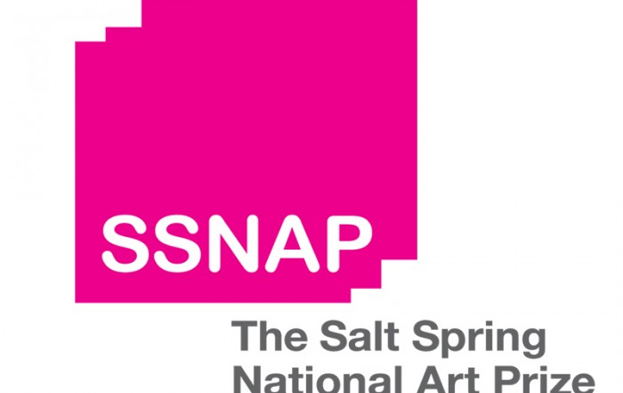 2017 Salt Spring National Art Prize Award Winners
